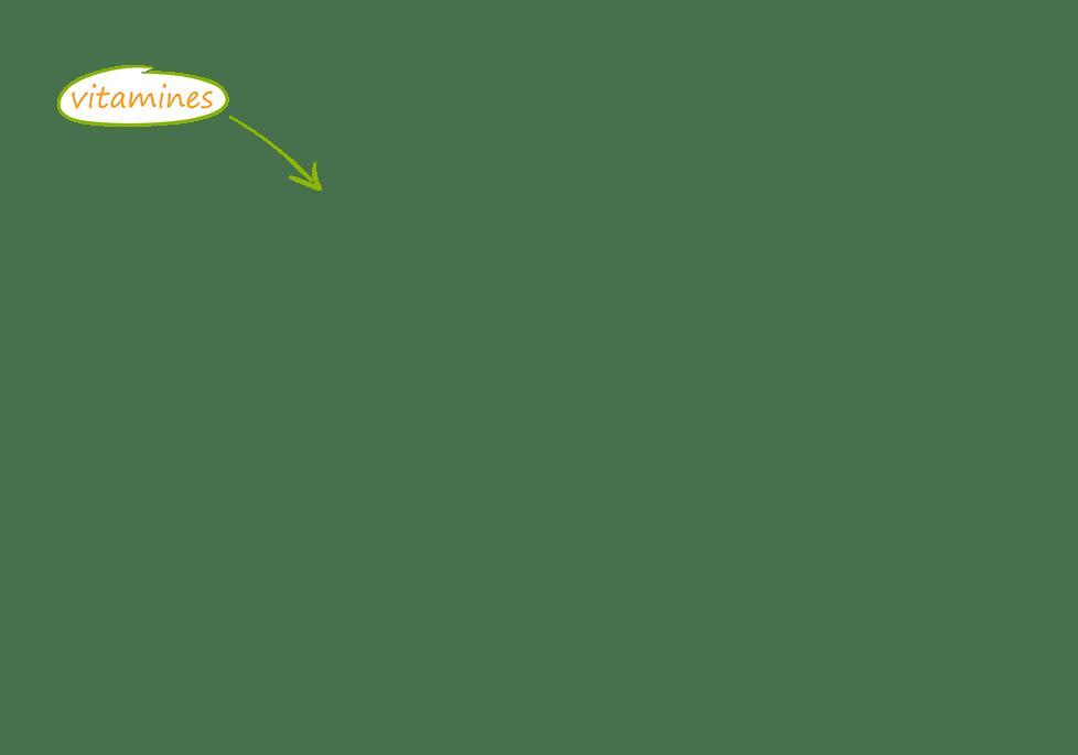 lou_champignons_974_picto1